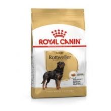 Rottweiler Adult 12 KG...